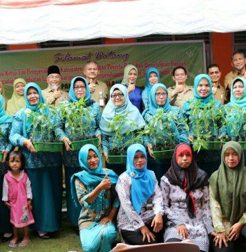 Pelatihan Diversifikasi Pangan, 18.000 Bibit Cabai Ditebar