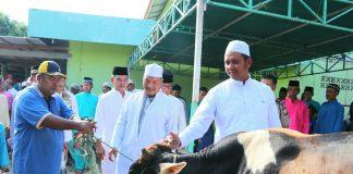 Bupati Bintan Apri Sujadi didampingin Wakil Bupati Bintan Dalmasri Syam saat menyerahkan hewan kurban di desa Busung.