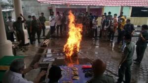Balai konservasi Bengkulu saat melakukan pembakaran (ft.rri)