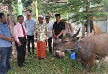Ketua DPRD Kepri Jumaga Nadeak (kiri baju putih) saat menyerahkan hewan qurban
